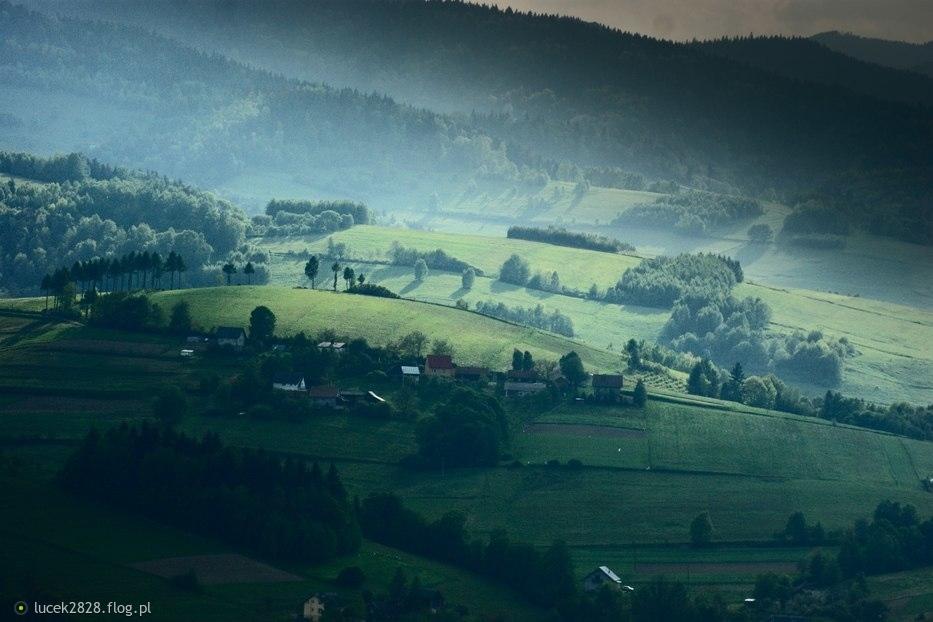 Idealna zieleń ze światłem....