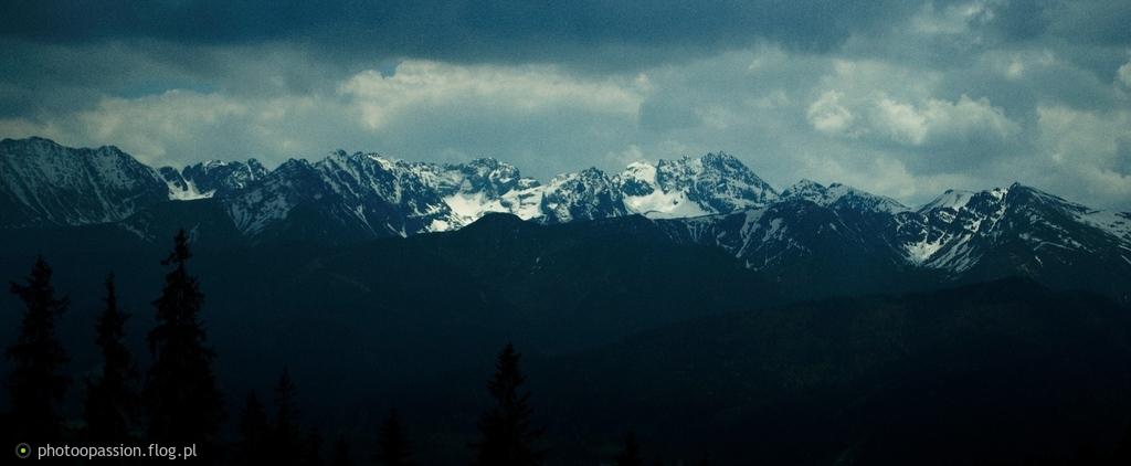 Zimowe szczyty w majowym gaju :)