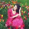 Tulips :: m: Natalia Wysocka ~ * ~ <br />Facebook | Instagram | 50<br />0px |Tumblr | Blogspot