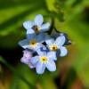Wspaniałego weekendu  z n<br />iebem w kolorze blue Ewun<br />iu:)))