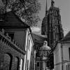 Wrocław ulica Kapitulna ::
