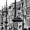 Miejskie snopki